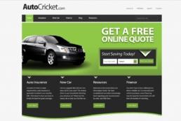 auto-cricket
